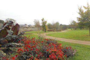 Massif de fleurs au parc des Cordeliers
