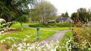 Chemins au Jardin public Anne Heinis