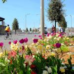Fleurissement du Boulevard Division Leclerc