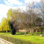 Vue du Jardin Public et du Merderet
